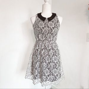 Black and White Lace Peter Pan Collar Dress Size S